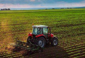 empresas-fertilizantes